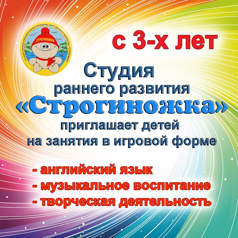 stroginozhka-mini-2019.jpg